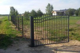 varstomi kiemo vartai 10