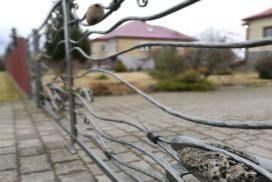 Metalinės strypų tvoros kalviškos 07